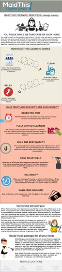 MAID THIS! CLEANING SERVICE INFOGRAPHICS: MAID THIS! CLEANING SERVICE INFOGRAPHICS